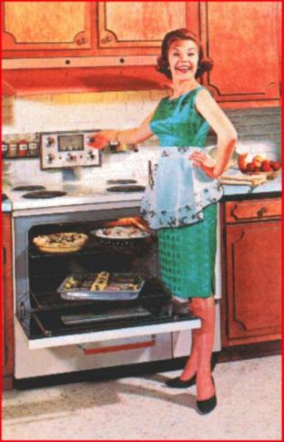 50s_housewife1242897876
