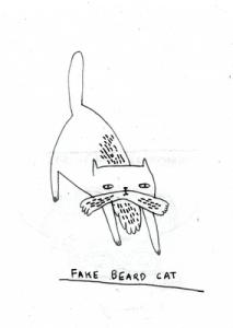 fakeBEARDcat